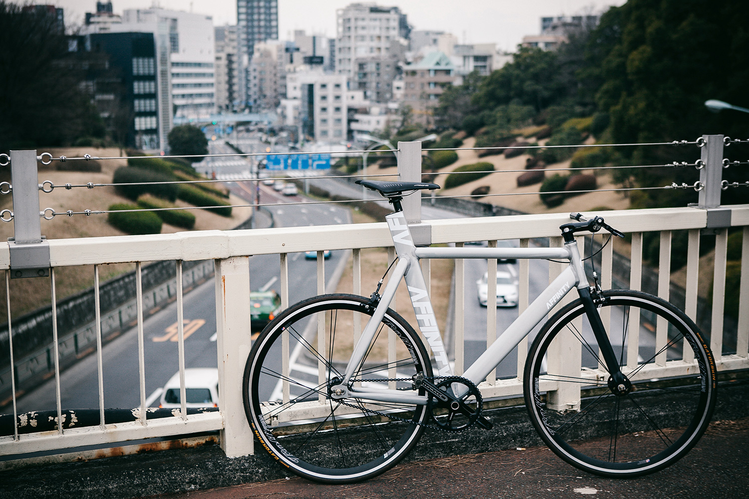 AFFINITY CYCLES